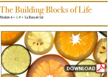 The Building Blocks of Life